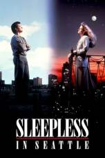 Sleepless in Seattle (1993) BluRay 480p & 720p Free HD Movie Download