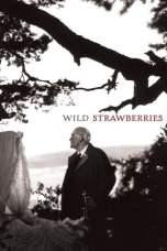 Wild Strawberries (1957) BluRay 480p & 720p Free HD Movie Download