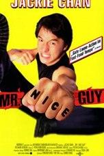 Mr. Nice Guy (1997) BluRay 480p, 720p & 1080p Movie Download