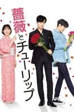 Rose and Tulip (2019) WEBRip 480p, 720p & 1080p Movie Download