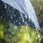 U Nikšiću kiša
