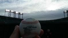 ATTPark_Baseball Garden