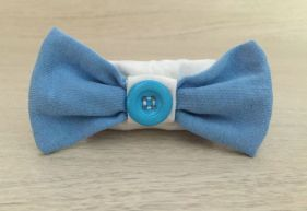 Bleu-clair-pourblanc_ferme