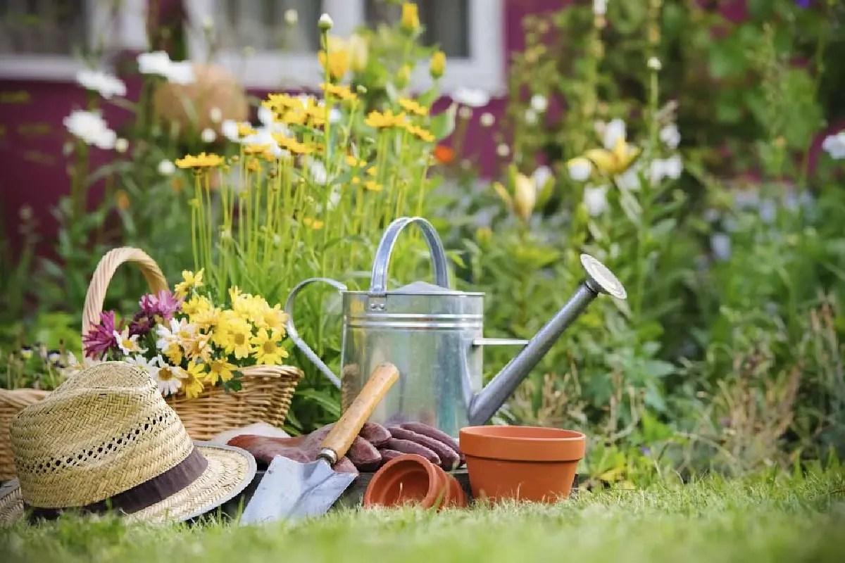 Progettare giardino