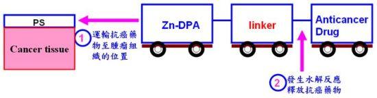 藥物傳輸系統設計圖示。