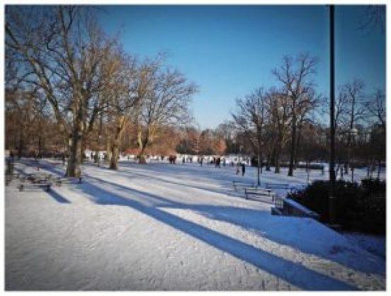 Co robić zimą we Wrocławiu