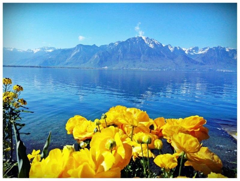 Montreux Szwajcaria i jesteś w raju