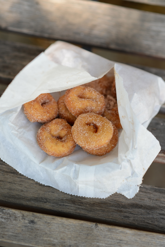 apple cider donuts M Loves M @marmar