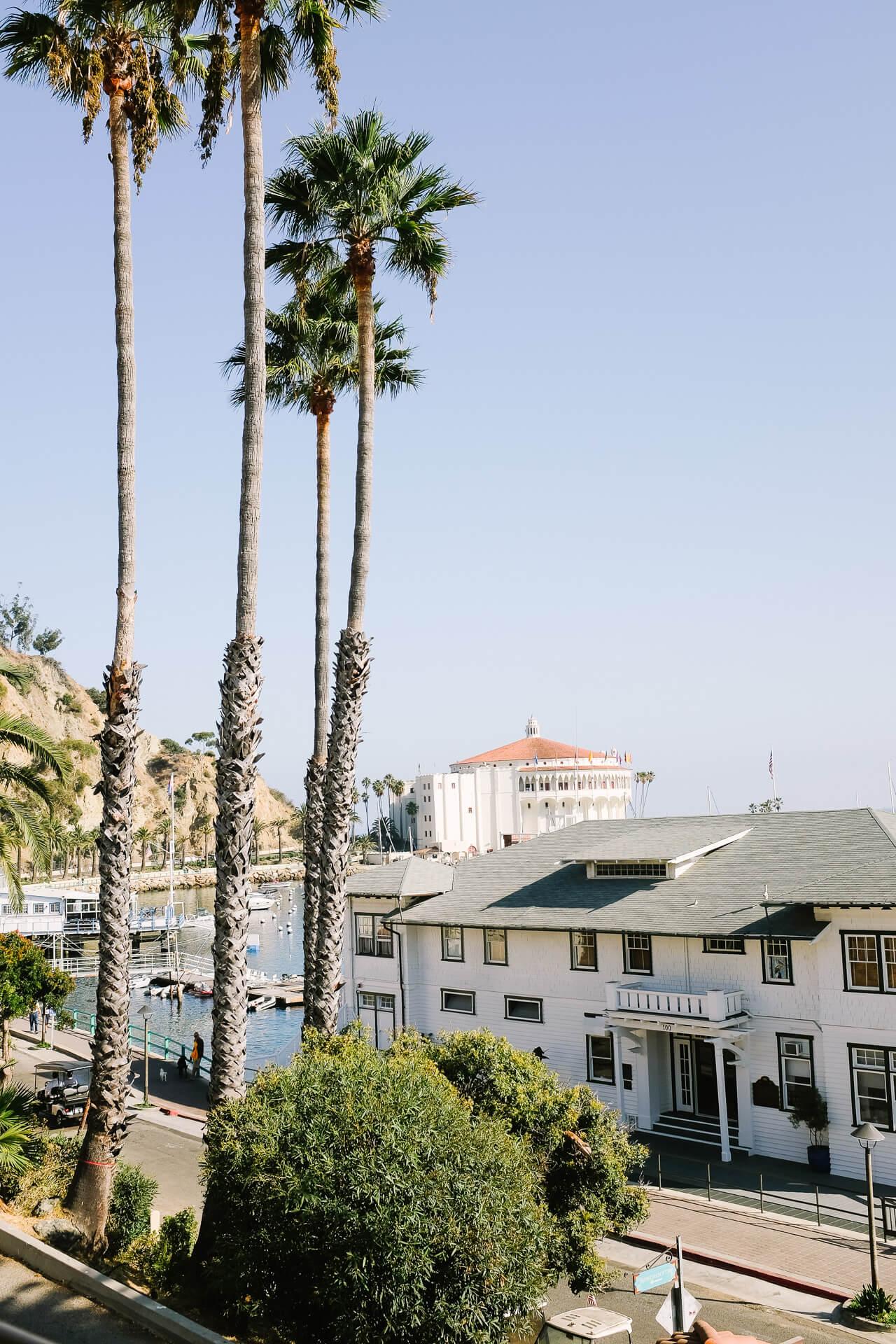 a beautiful day on Catalina Island