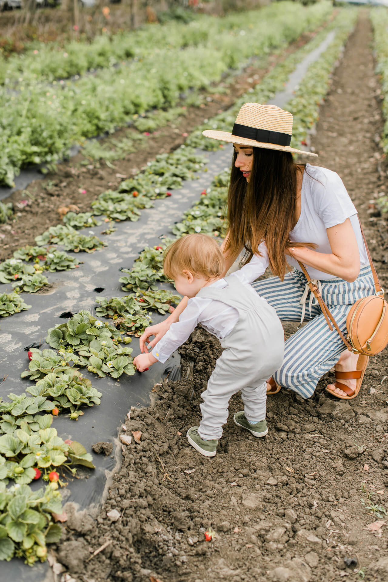 I'd love to hear your recommendations for family friendly summer activities! We loved our day-trip to our local Orange County farm!