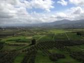 the vast agricultural landscape of crete!