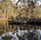Urrbrae wetlands 2014