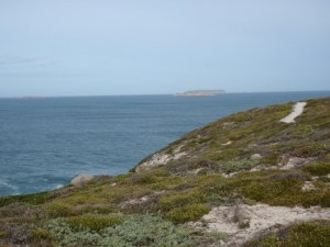 View of Seal Island & Althorpe Islands
