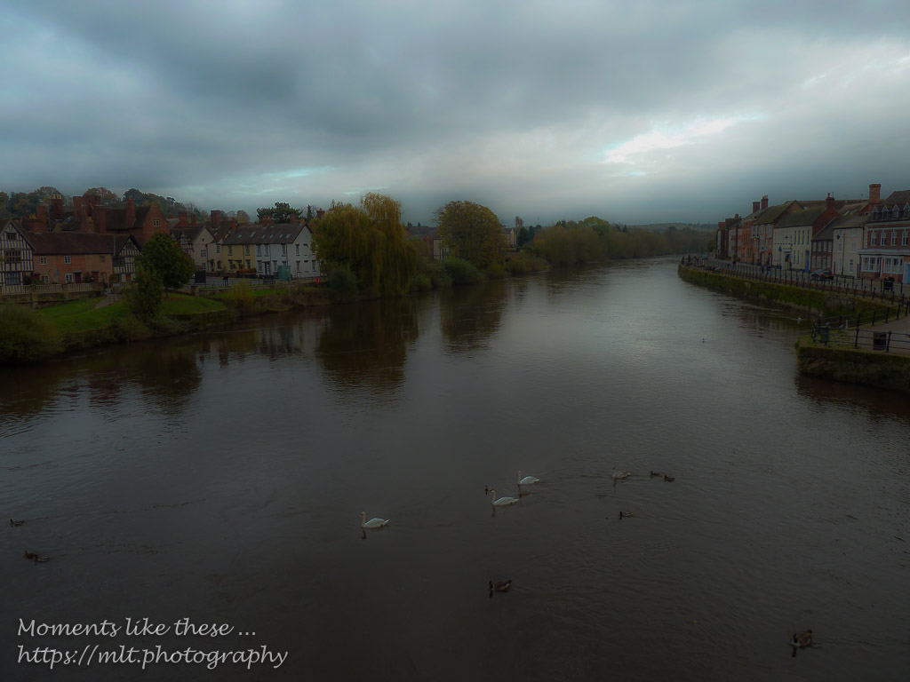River Severn at Bewdley