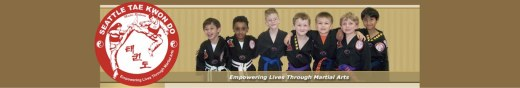 Get Started at Seattle Tae Kwon Do 560x88 MLTnews Sponsors