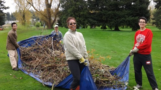 Volunteers from Mountlake Terrace High School Eco Club drag a load of blackberry vines to the dumpster during the city's Earth Day Cleanup.
