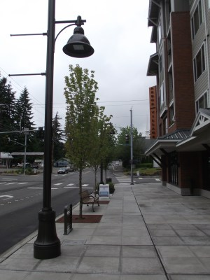 the wide sidewalk, lighting, benches, trees and bicycle rack that are part of the finished Arbor Village Apartments complex stand in sharp contrast with most of the Town Center District.