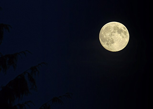 The moon over Mountlake Terrace as seen by photographer David Carlos