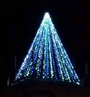 The Mountlake Terrace Holiday Tree was sporting Seahawks blue colors.