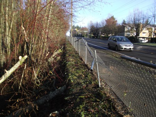 : A chain link fence in the 23600 block of Cedar Way was damaged by falling trees.