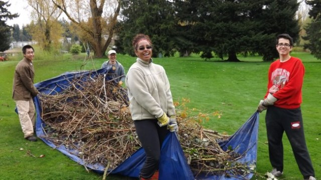 Volunteers from Mountlake Terrace High School Eco Club drag a load of blackberry vines to the dumpster during the city's Earth Day Cleanup. (Photo courtesy City of Mountlake Terrace)