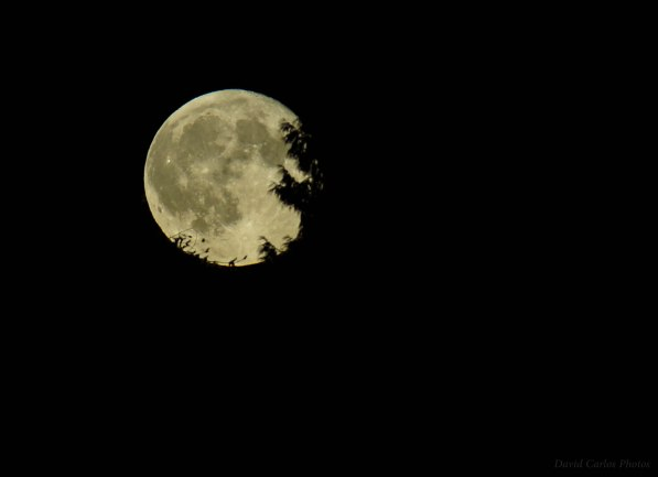 Full Moon/Sturgeon Moon, Aug. 18, 2016. (Photo by David Carlos)