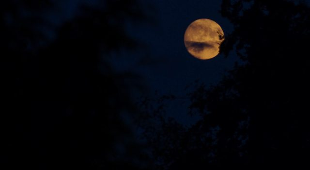 red moon on friday - photo #26