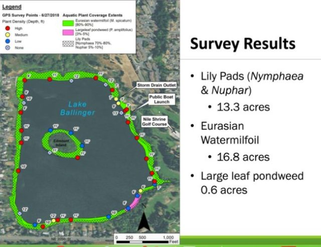 Lake Ballinger aquatic weeds map