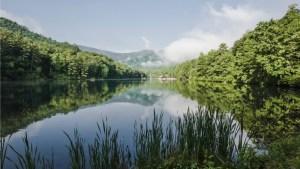 National Trails Day @ Vogel State Park