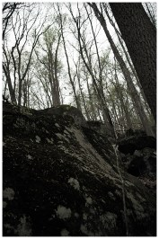 untitled shoot-2542-2