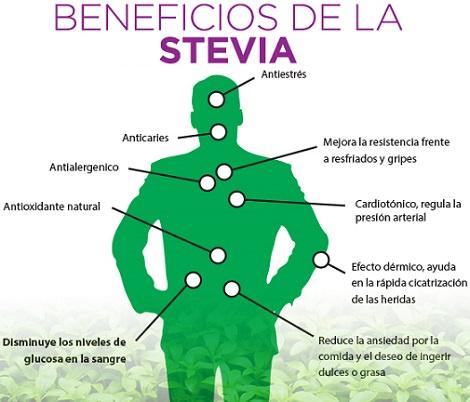 beneficios de stevia