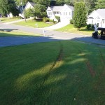 Neighbor Put Tire Tracks In My Perfect Lawn Page 3