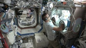 RevBio Awarded Funding To Conduct A Live Bone Experiment On The International Space Station
