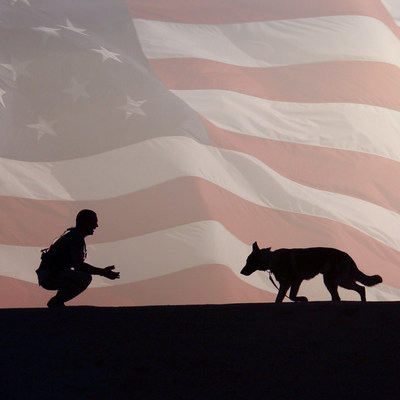 On Veterans Day, give our veterans not just thanks but tangible aid.