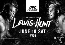 derrick lewis mark hunt