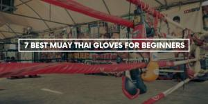 7 Best Muay Thai Gloves For Beginners