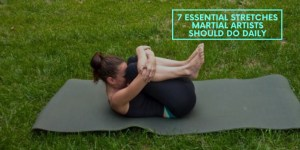7 Essential Stretches Martial Artists Should Do Daily