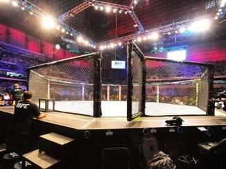 Octagon UFC MMA (Jason Silva)
