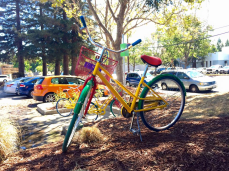 Google bikes were a common sight during our visit to Googleplex. Employees are provided access to these Google branded cycles for traveling across the enormous campus.