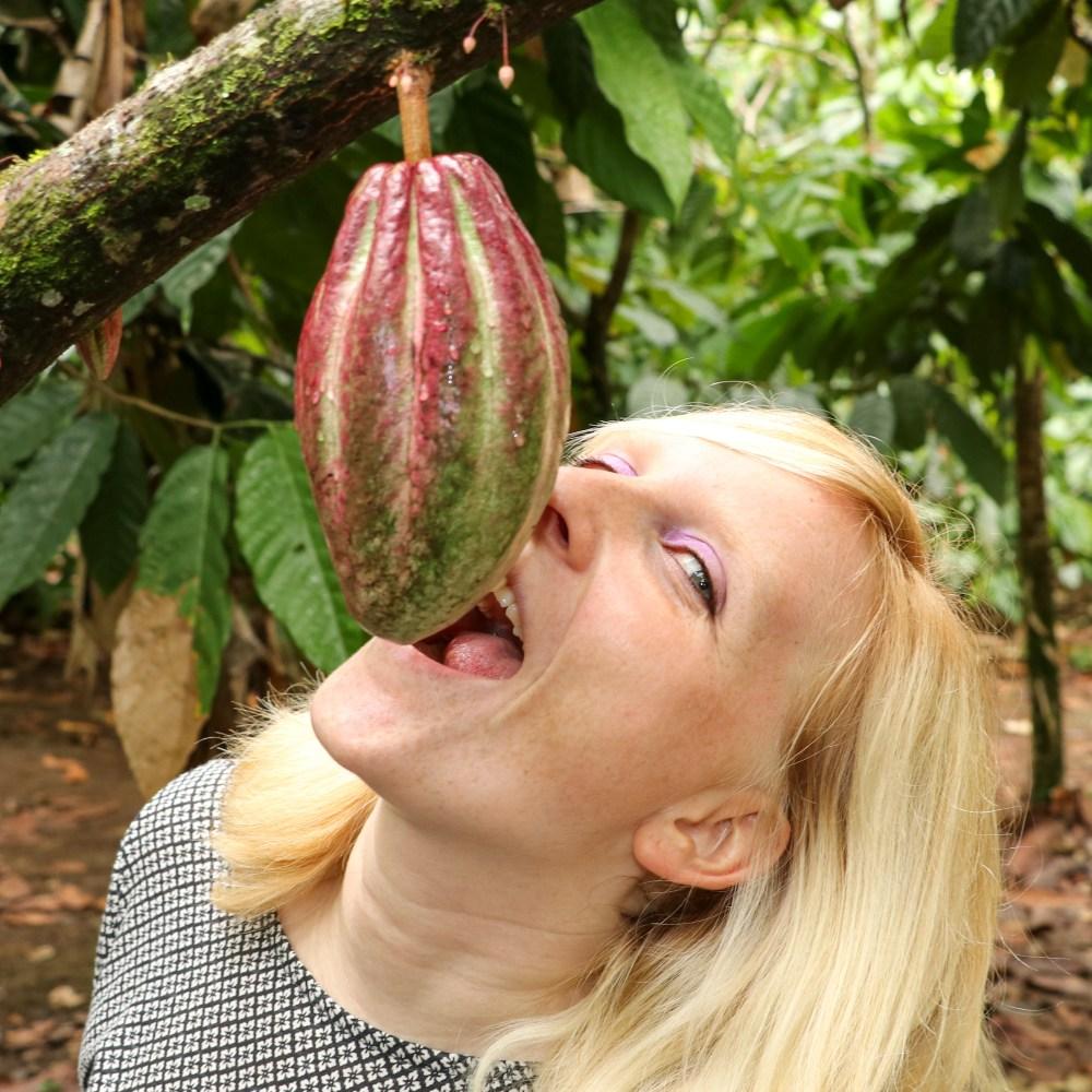 Costa Rica: Der Arenal-Vulkan und unsere Rainforest Chocolate Tour