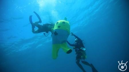 【芸能】ふなっしー、今度はスキューバダイビングに初挑戦! 「怖かったなっしー」