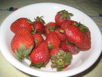 Strawberries_2