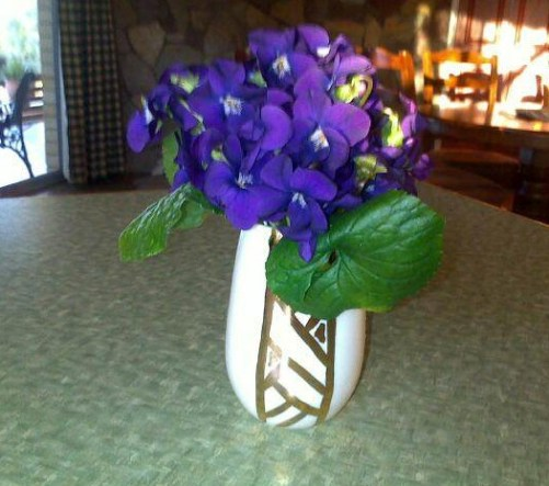 A gold lustre vase with home-grown flowers - Photo by RC