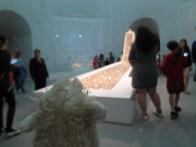 Lamby observes art.