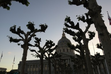 Capitol and baobabs.