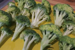 Sunday-afternoon meal prepping like a boss. a phalanx of broccolis!