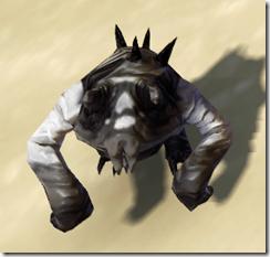 Masked Lobel Front[3]