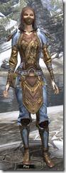 Breton Ironthread Jerkin - Female VR4 Superior Front