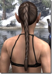 Braided Ponytail 3