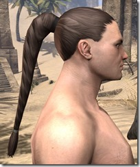 Braided Ponytail 2